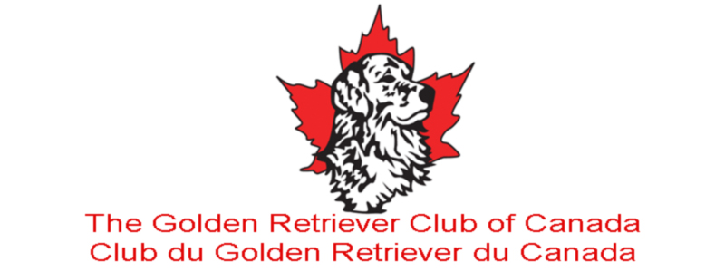 Club du Golden Retriever du Canada