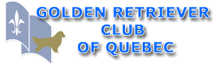 Club Golden Retriever du Québec / Golden Retriever Club of Quebec